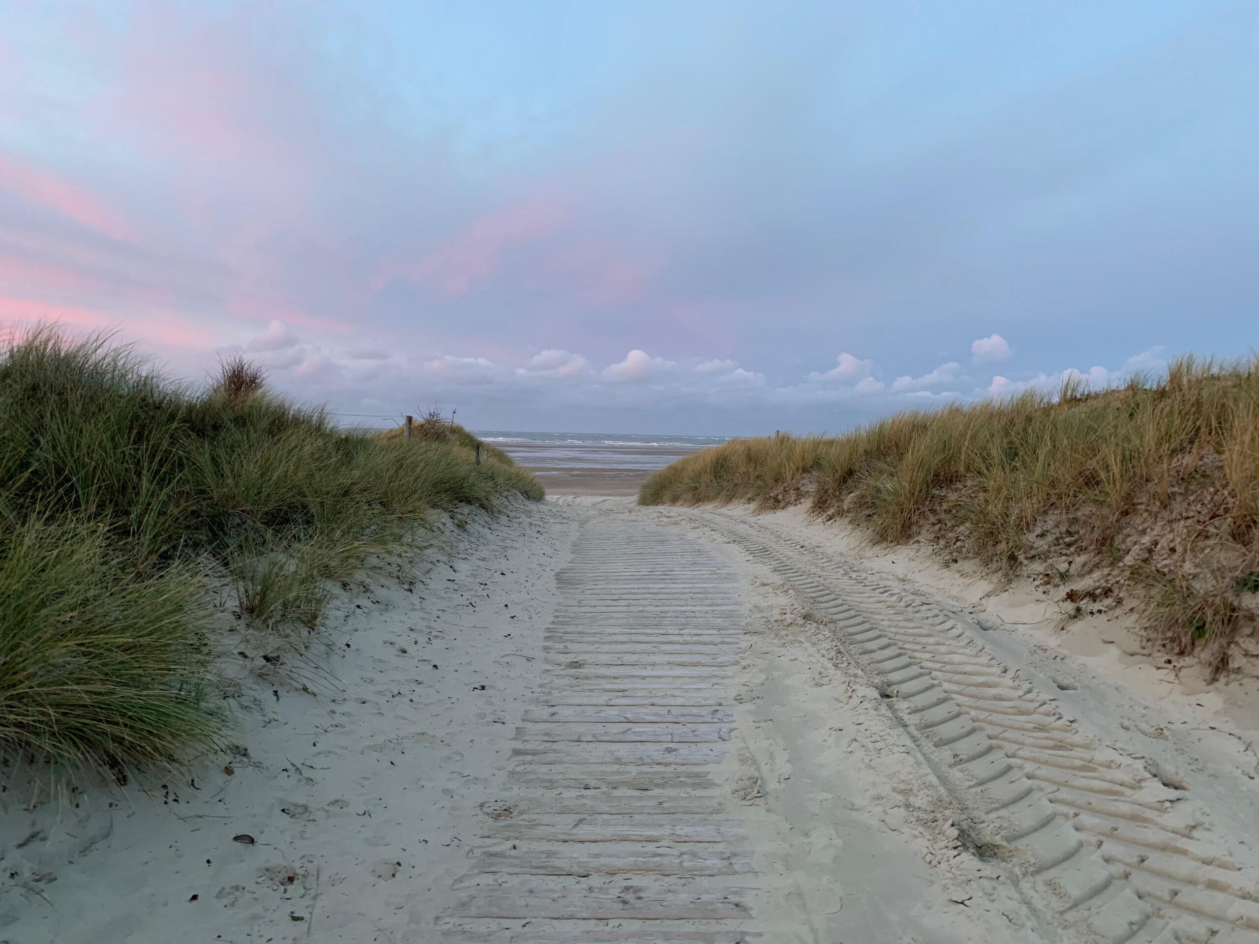Blick aus den Dünen auf den Strand